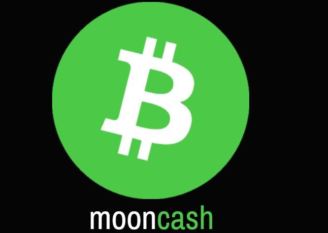 free bitcoin cash earn free money daily