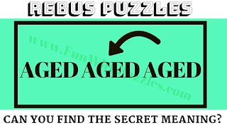 Can you solve this rebus brain teasers?