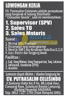 Bursa Kerja Lampung CV. Putrasalim Celesindo