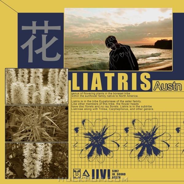 Austn – Liatris – Single