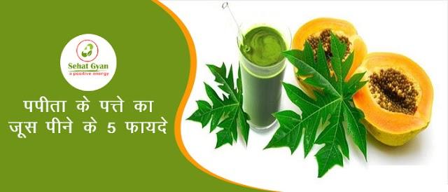 पपीते के पत्तो के रस का सेवन करने के 5 प्राकृतिक स्वास्थ्य लाभ | 5 Natural Health Benefits of Papaya Leaf Juice