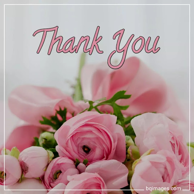 thank you images hd