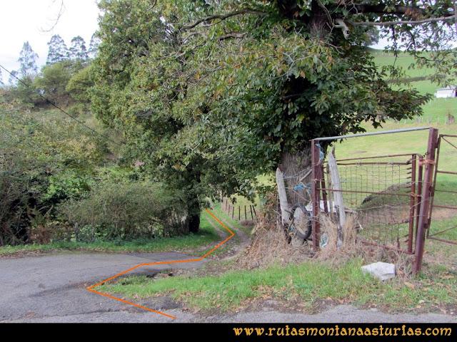 Ruta Olloniego Escobín: Desvío a la derecha bajando a Olloniego