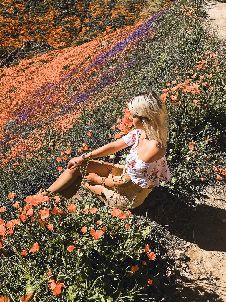 Flowerfild