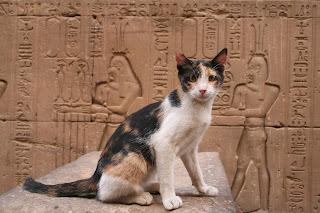 Curiosidades sobre los gatos en el Antiguo Egipto