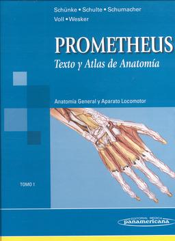 ~PDF/ePub~ Atlas de anatomia/ Atlas of Anatomy: …