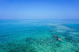 cancún snorkeling