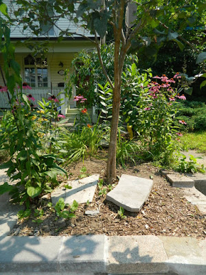 The Pocket front garden clean up after by Paul Jung Gardening Services Toronto