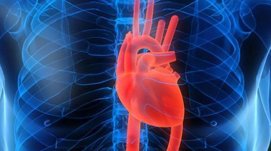 Inilah 5 Tips Sederhana Kurangi Resiko Terkena Penyakit Jantung