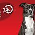 BSA: Banco de Sangue Animal