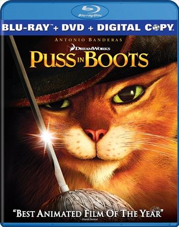 Puss in Boots 2011 Dual Audio Hindi 720p BluRay 950mb
