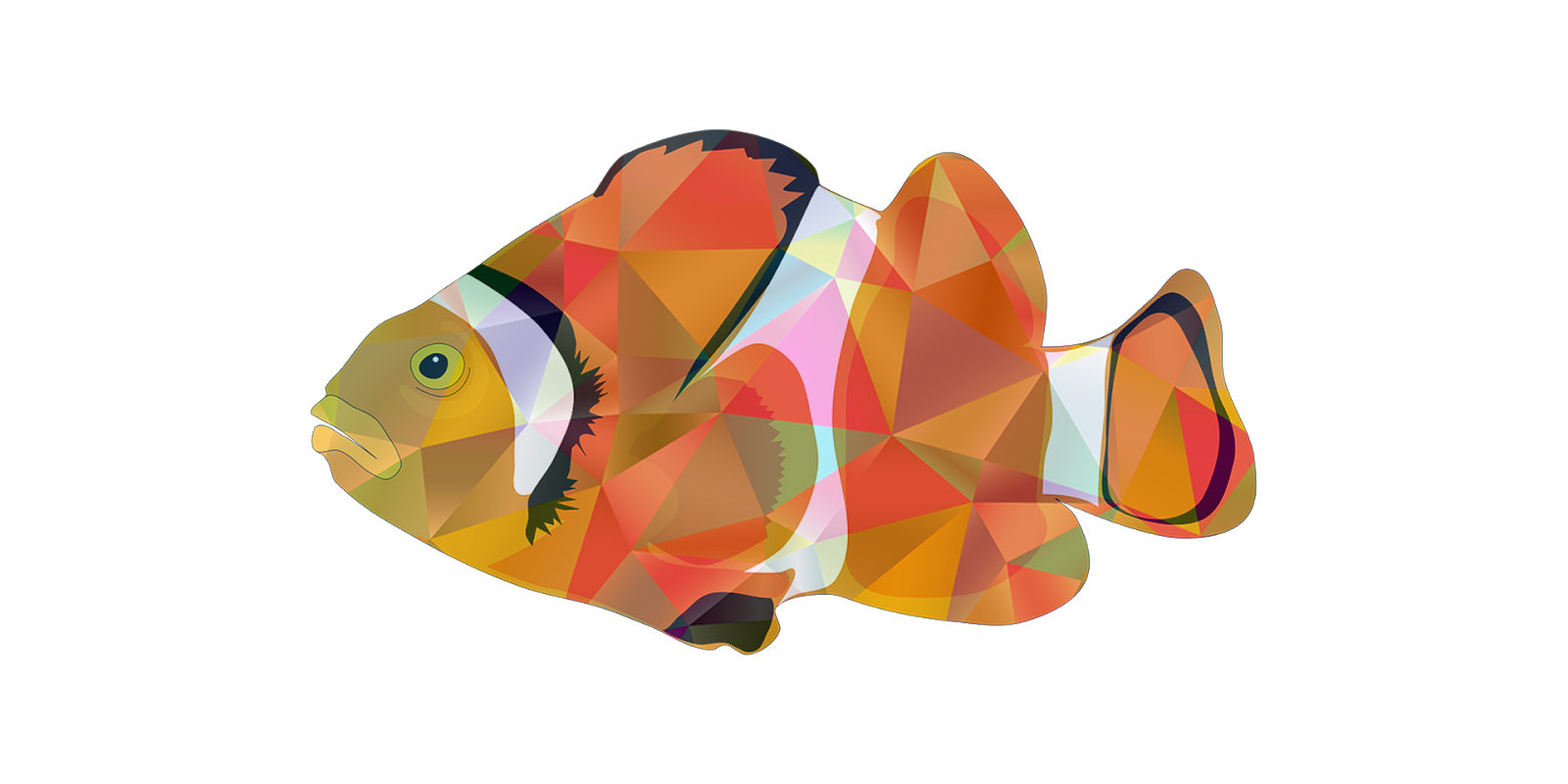 Nemo fish for colour drawing