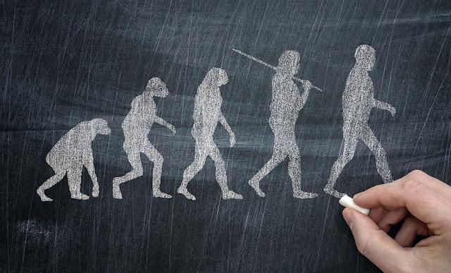 Kesalahpahaman Orang Awam Tentang Teori Evolusi