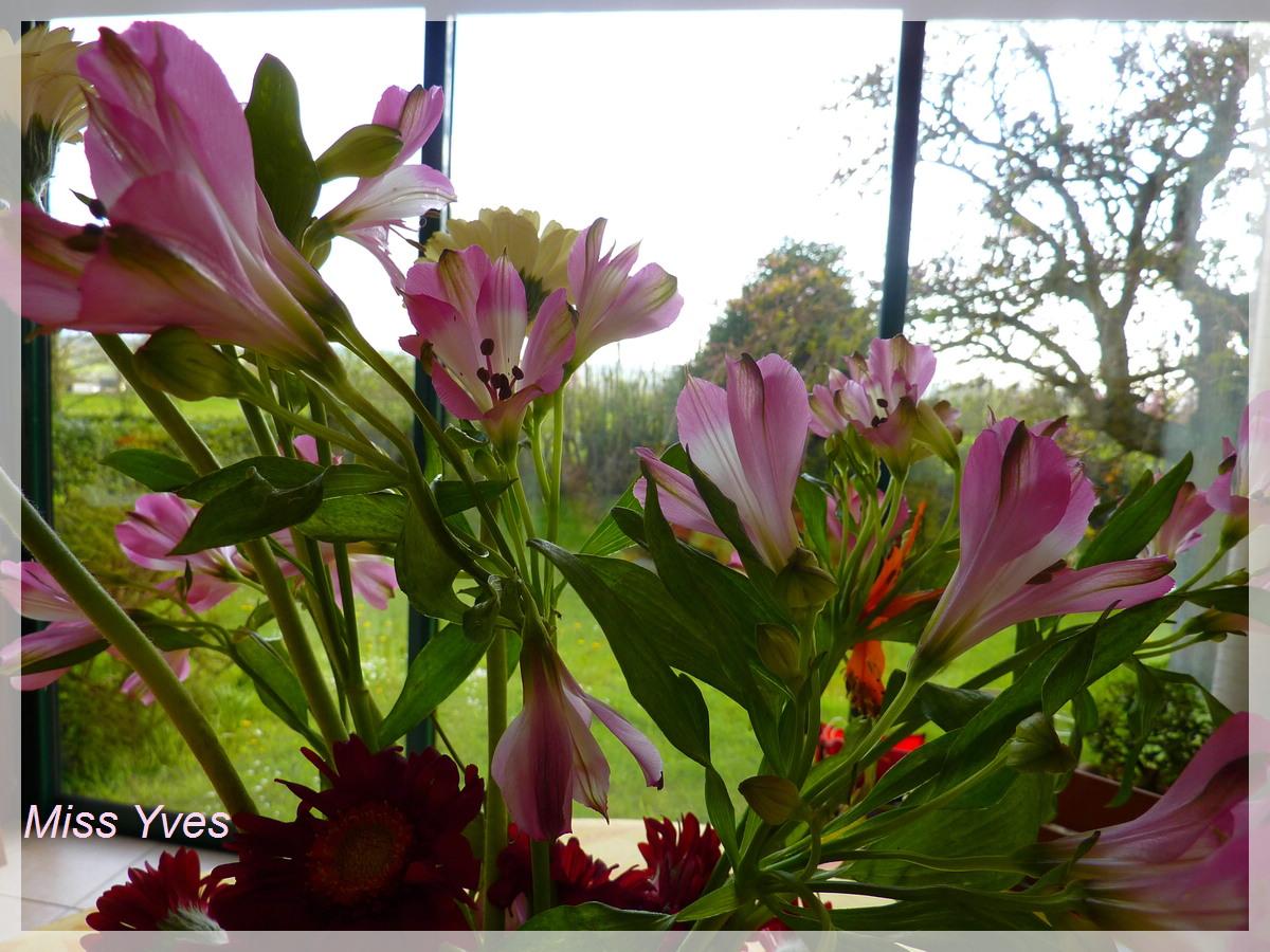 dessin poesie rencontre avec le printemps