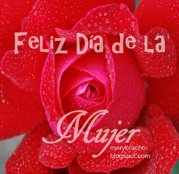 bonita rosa roja imagen del dia de la mujer