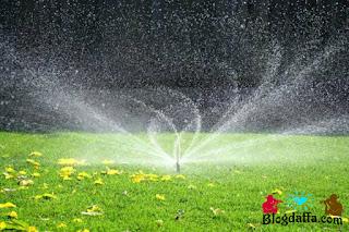 Cara Menyiram tanaman menggunakan alat penyiram otomatis