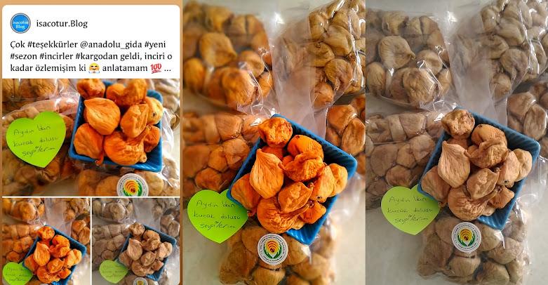 Anadolu Gıda Bilara incir Siparişi