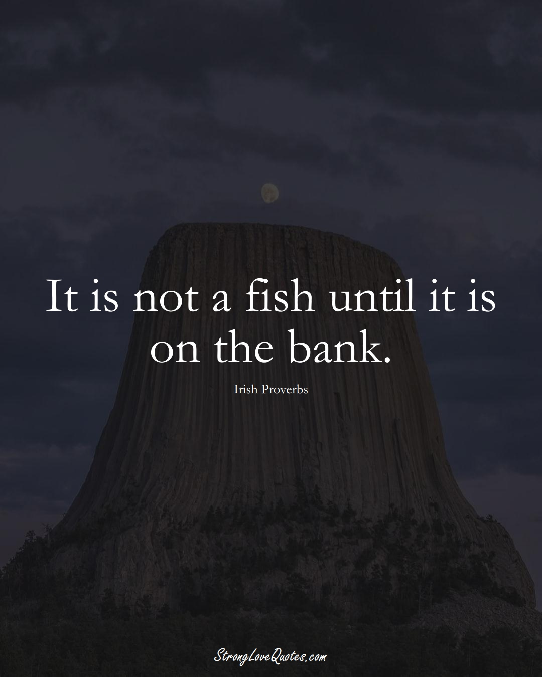 It is not a fish until it is on the bank. (Irish Sayings);  #EuropeanSayings