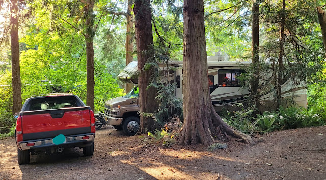Motorhome park in beautiful wooded area