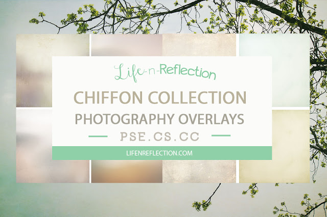 https://creativemarket.com/lifenreflection/845766-Chiffon-Overlay-Collection-Bundle