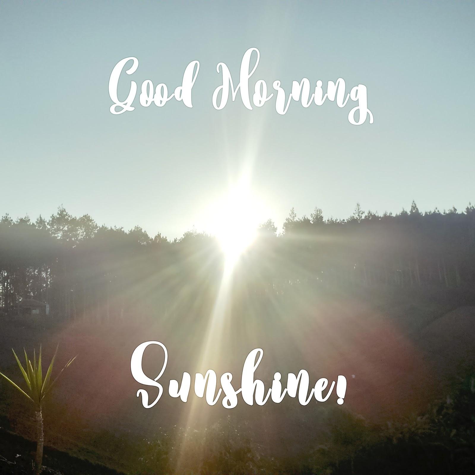 Motto Nolla #46 - Bangun Pagi