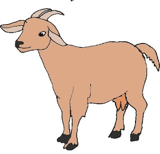 10 Lines on Goat in Hindi