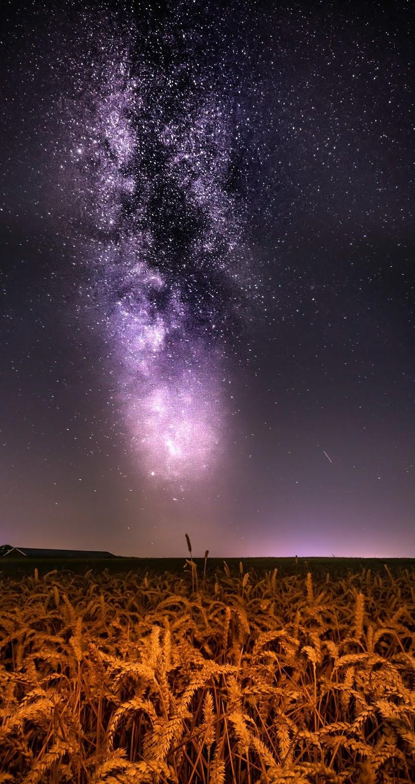 Dãy ngân hà giữa cánh đồng đêm