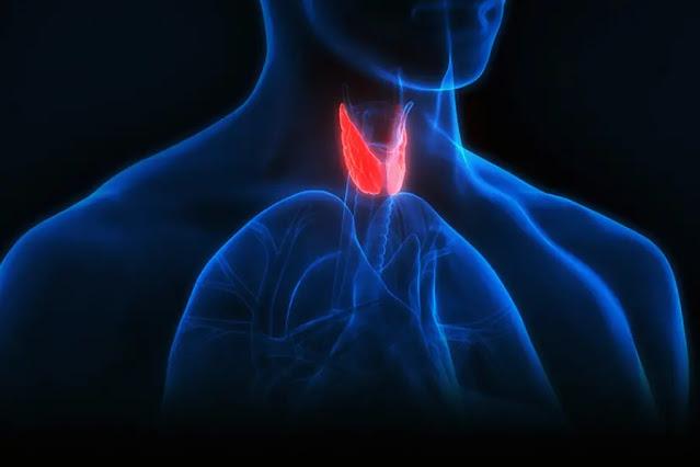 underactive thyroid test
