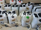 manfaat labu air, labu air ruma f1, cara menanam labu, jual benih, toko pertanian, toko online, lmga agro
