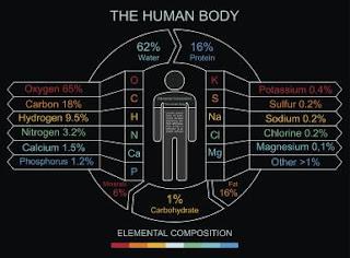 10 Unsur Kimia Penyusun Tubuh Manusia