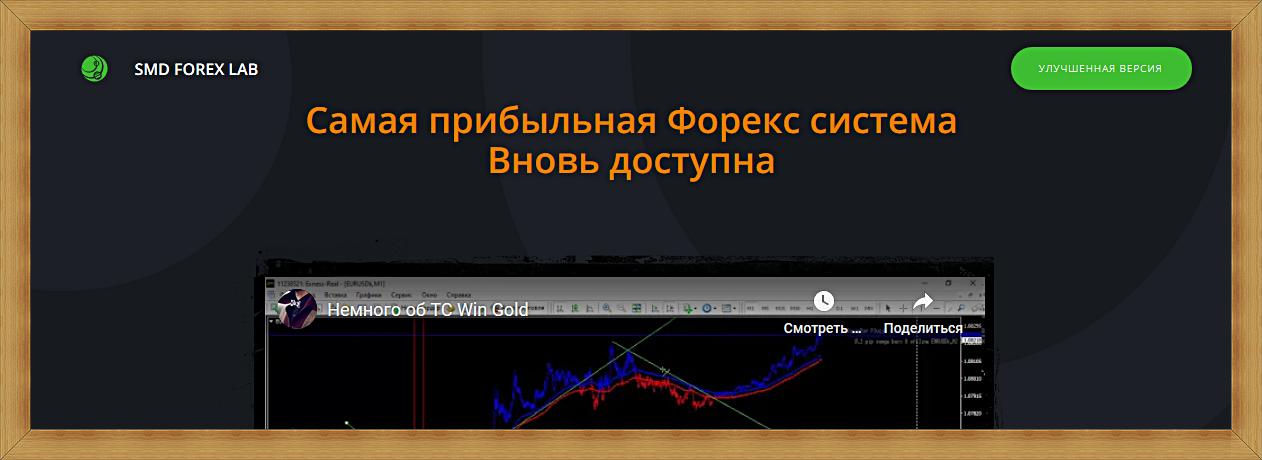 TS Win Gold 2020 – отзывы. Forex стратегия