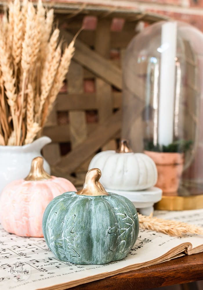 close up of white waxed green pumpkin and gold stem
