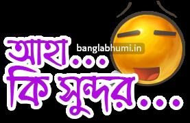 Aha Ki Sundor Bengali Funny Comment Sticker