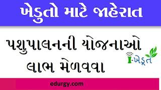 Gujarat ikhedut portal  | Online Registration, Application Status, Schemes List