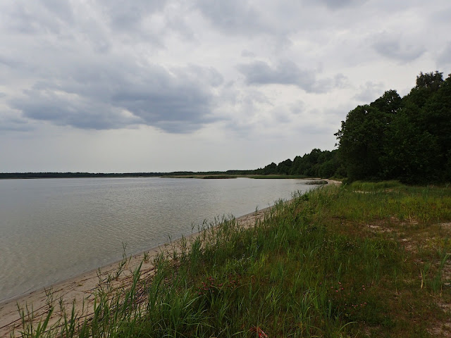 Jedno z poleskich jezior (2017)