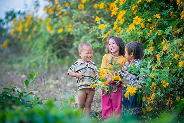 Moc Chau la mot trong nhung dia diem ngam hoa da quy ly tuong