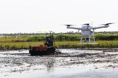 Bertani di KalselBisa Diintruksi Dari Jakarta Dengan Teknologi Ini