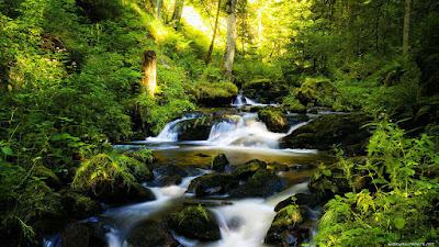 Imágenes de paisajes para Fondos de pantalla