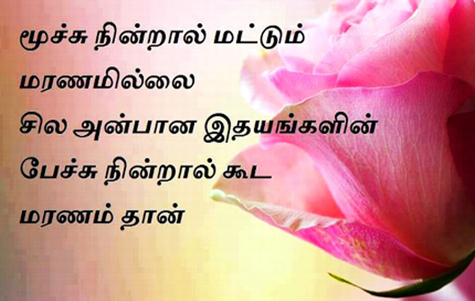 Best Kadal Kavithaigal In Tamil Languages With Images Www