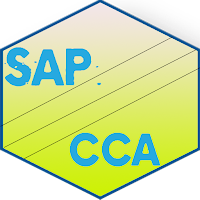 Learn SAP CCA