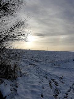 Winterspaziergang bei Großschwabhausen