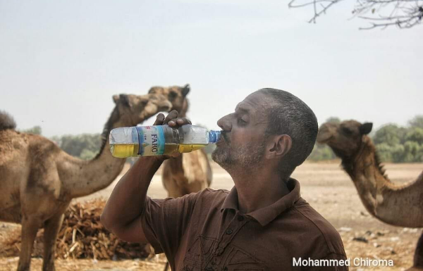 """Son of former Nigerian Minister, Ali Monguno pictured drinking Camel urine, says, """"It's good for heart and liver problems"""""""