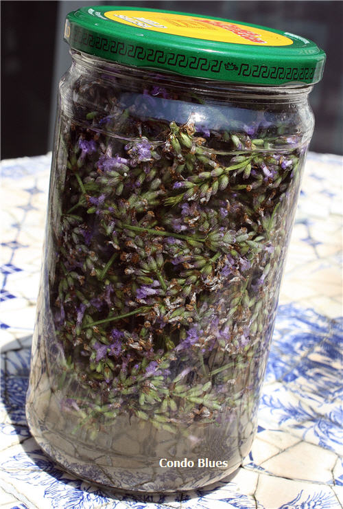 how to make lavender essential oil tincture