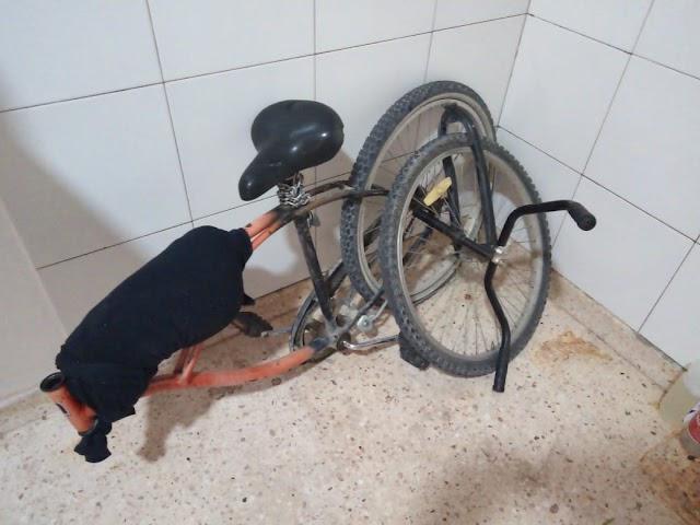 A una ciclista se le quebró la horquilla y sufrió varias heridas en Brickman e Ing.Luiggi