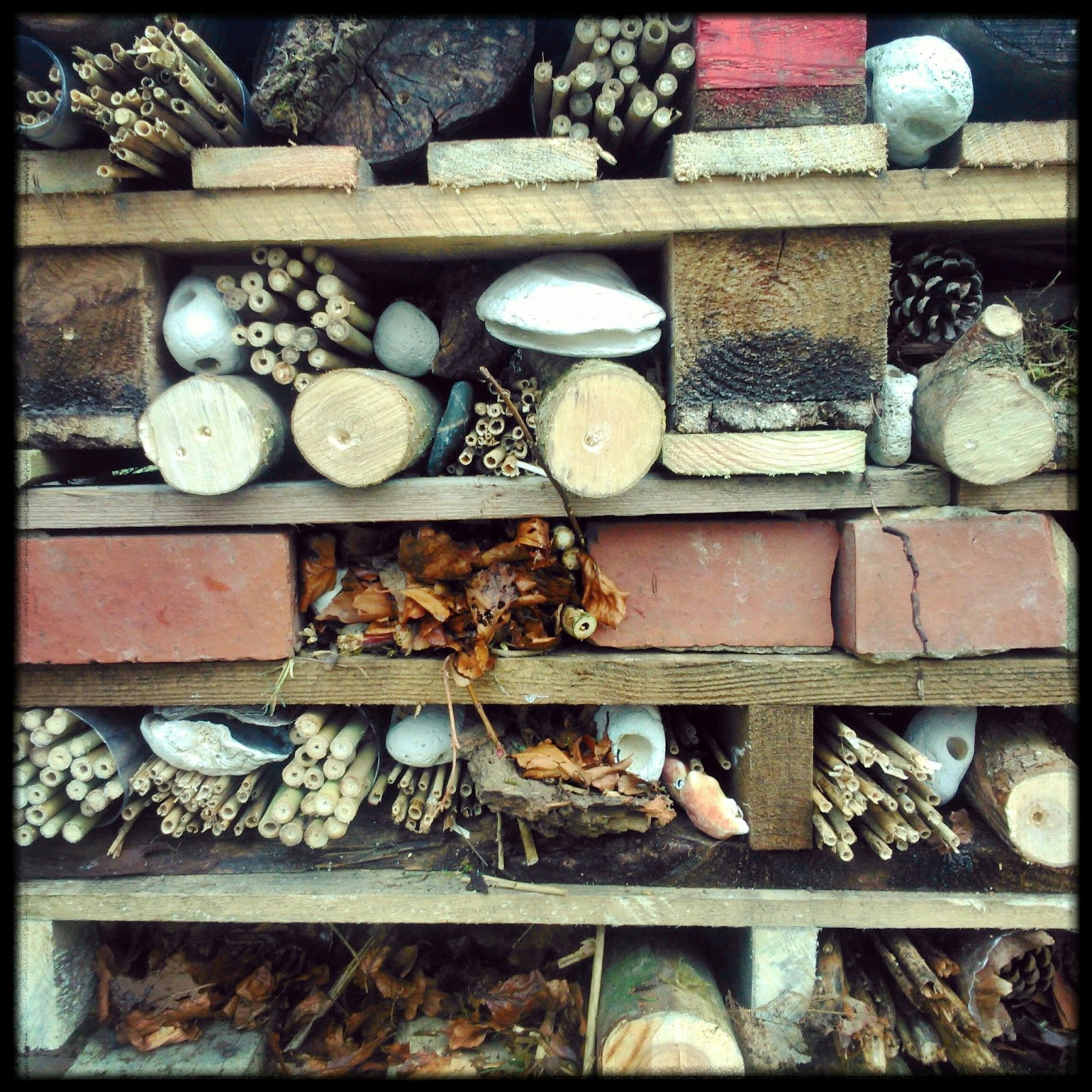 A closer look at the Bug Hotel