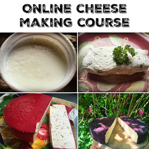 Online Cheesemaking Course