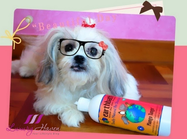 vitacost mango tango pet shampoo dog review