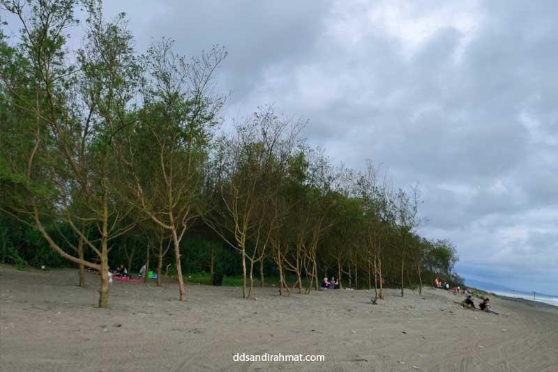 Pantai Cemara Cipanglay Cianjur