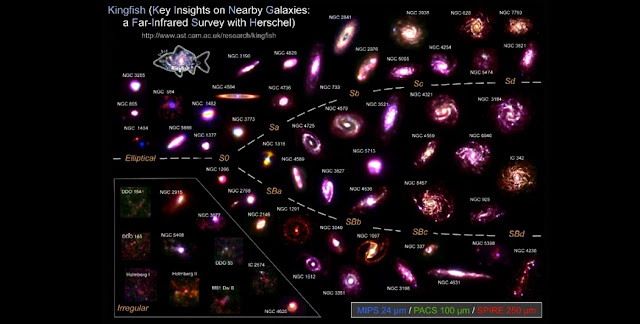 "The radio observations were based on the KINGFISH (""Key Insights on Nearby Galaxies: a Far-Infrared Survey with Herschel"") sample of galaxies. The compilation shows composite infrared images of these galaxies created from Spitzer and Herschel observations. Credit: Maud Galametz"