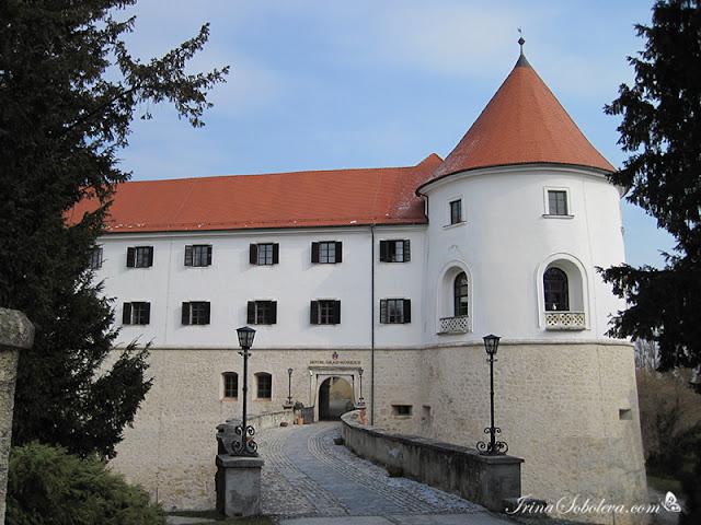 Замок Мокрице